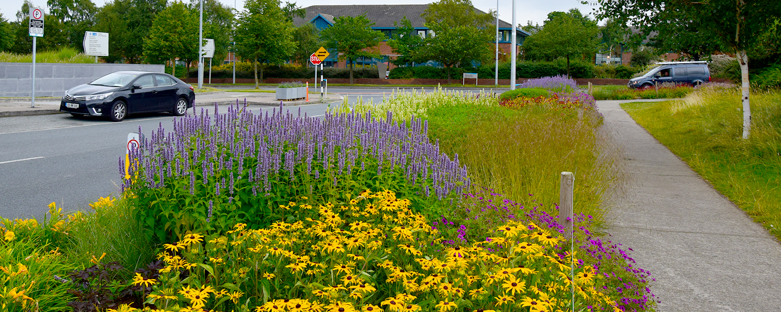 flower-your-place-perennials-public-space-after-2